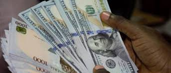 Can Nigeria Survive As It Continues To Sustain Liberalised Currency?